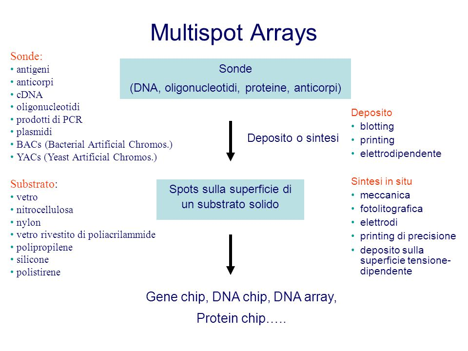 Multispot Arrays Sonde (DNA, oligonucleotidi, proteine, anticorpi) Spots sulla superficie di un substrato solido Deposito o sintesi Gene chip, DNA chip, DNA array, Protein chip…..
