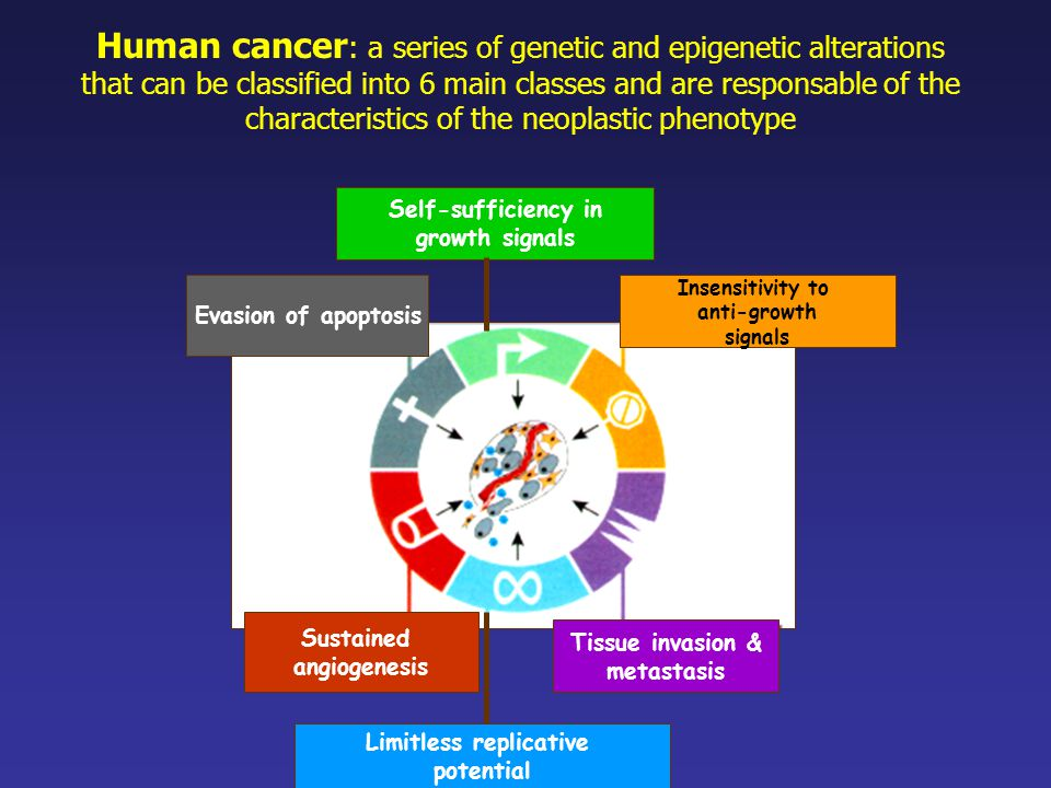 Human cancer : a series of genetic and epigenetic alterations that can be classified into 6 main classes and are responsable of the characteristics of the neoplastic phenotype Self-sufficiency in growth signals Limitless replicative potential Tissue invasion & metastasis Sustained angiogenesis Evasion of apoptosis Insensitivity to anti-growth signals