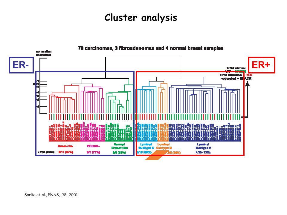 ER-ER+ Cluster analysis Sorlie et al., PNAS, 98, 2001