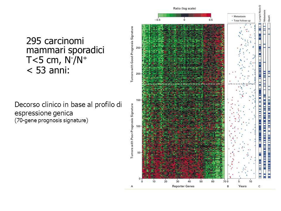 Van de Vijver et al., NEJM, 347, 25, 2002 295 carcinomi mammari sporadici T<5 cm, N - /N + < 53 anni: Decorso clinico in base al profilo di espression