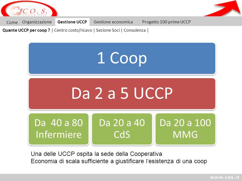 1 CoopDa 2 a 5 UCCP Da 40 a 80 Infermiere Da 20 a 40 CdS Da 20 a 100 MMG Come OrganizzazioneGestione UCCP Quante UCCP per coop ? | Centro costo/ricavo
