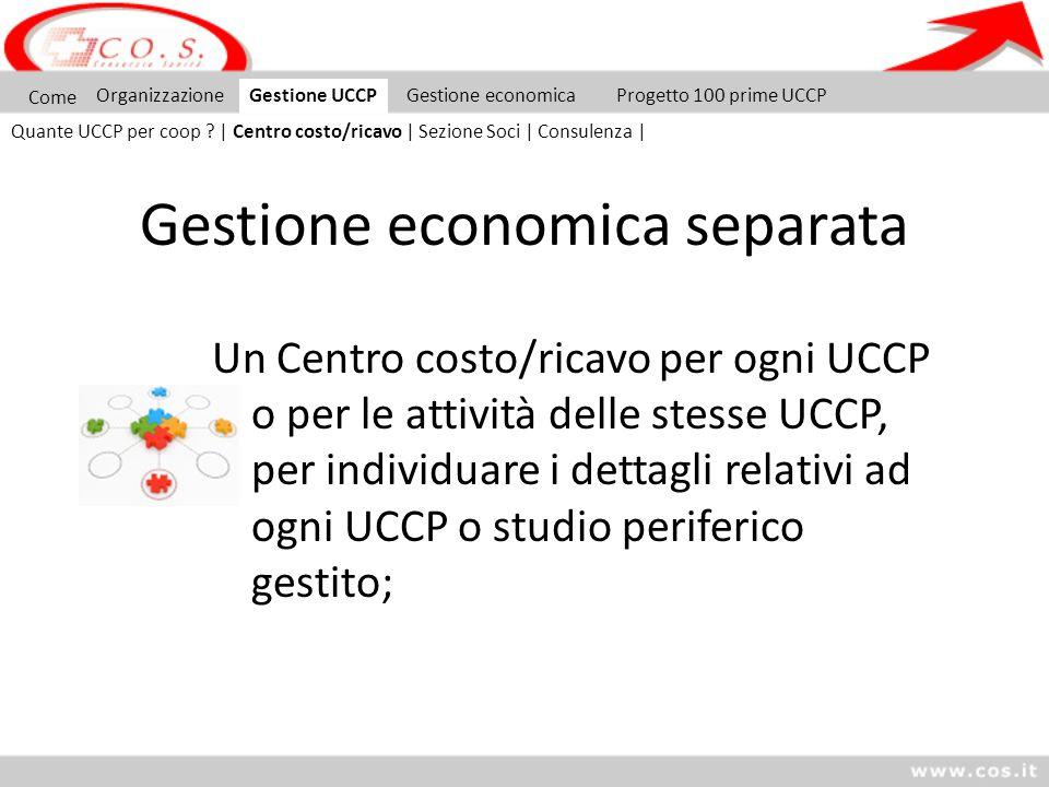 Gestione economica separata Un Centro costo/ricavo per ogni UCCP o per le attività delle stesse UCCP, per individuare i dettagli relativi ad ogni UCCP