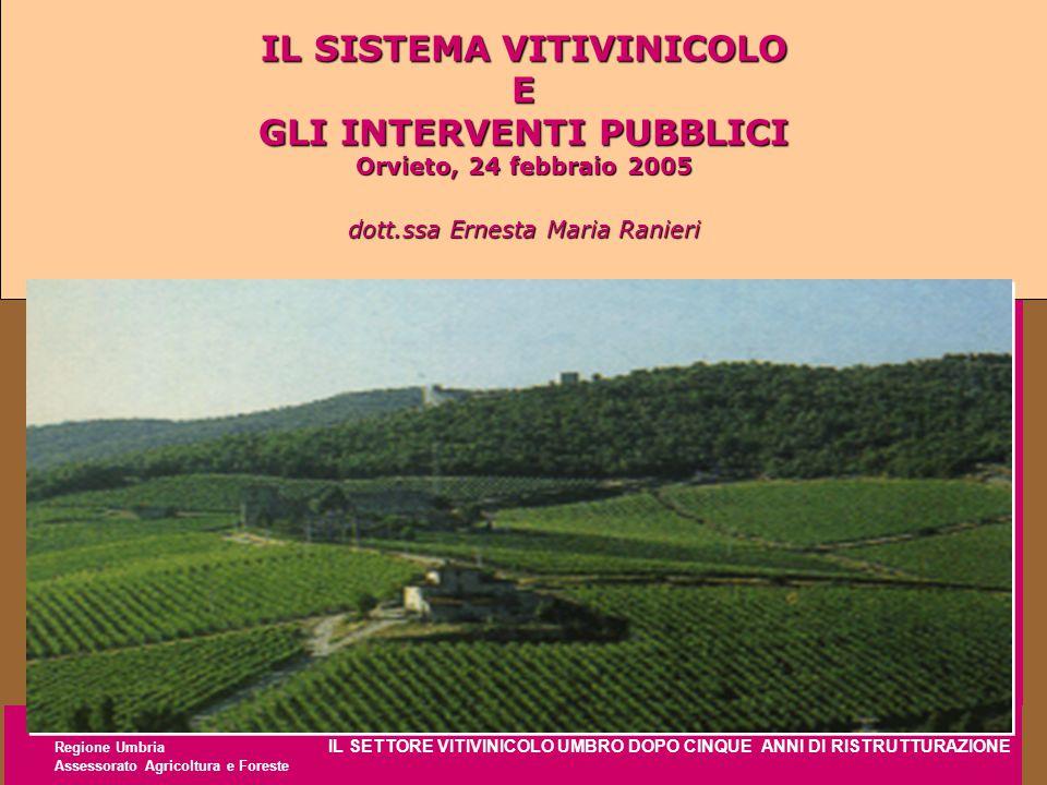 Regione Umbria IL SETTORE VITIVINICOLO UMBRO DOPO CINQUE ANNI DI RISTRUTTURAZIONE Assessorato Agricoltura e Foreste IL SISTEMA VITIVINICOLO E GLI INTE