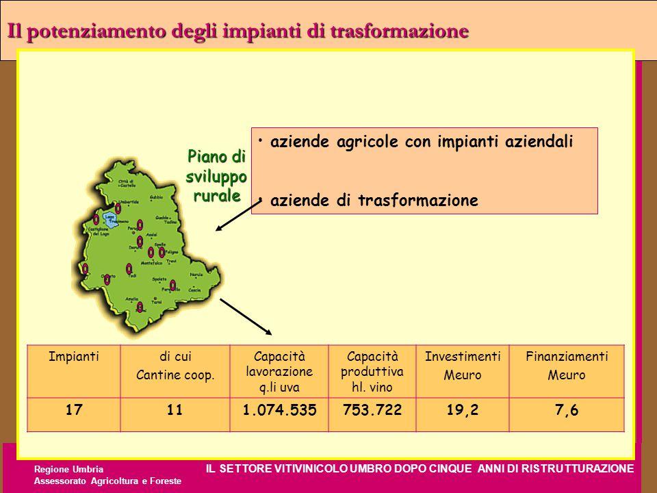 Regione Umbria IL SETTORE VITIVINICOLO UMBRO DOPO CINQUE ANNI DI RISTRUTTURAZIONE Assessorato Agricoltura e Foreste Il potenziamento degli impianti di