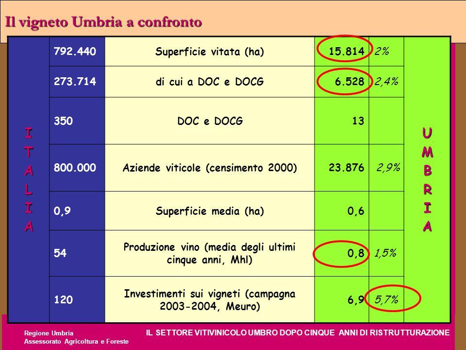 Regione Umbria IL SETTORE VITIVINICOLO UMBRO DOPO CINQUE ANNI DI RISTRUTTURAZIONE Assessorato Agricoltura e Foreste Il vigneto Umbria a confronto ITAL