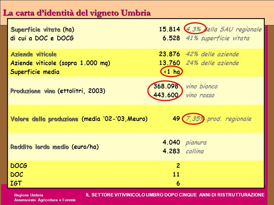 Regione Umbria IL SETTORE VITIVINICOLO UMBRO DOPO CINQUE ANNI DI RISTRUTTURAZIONE Assessorato Agricoltura e Foreste La carta d'identità del vigneto Um