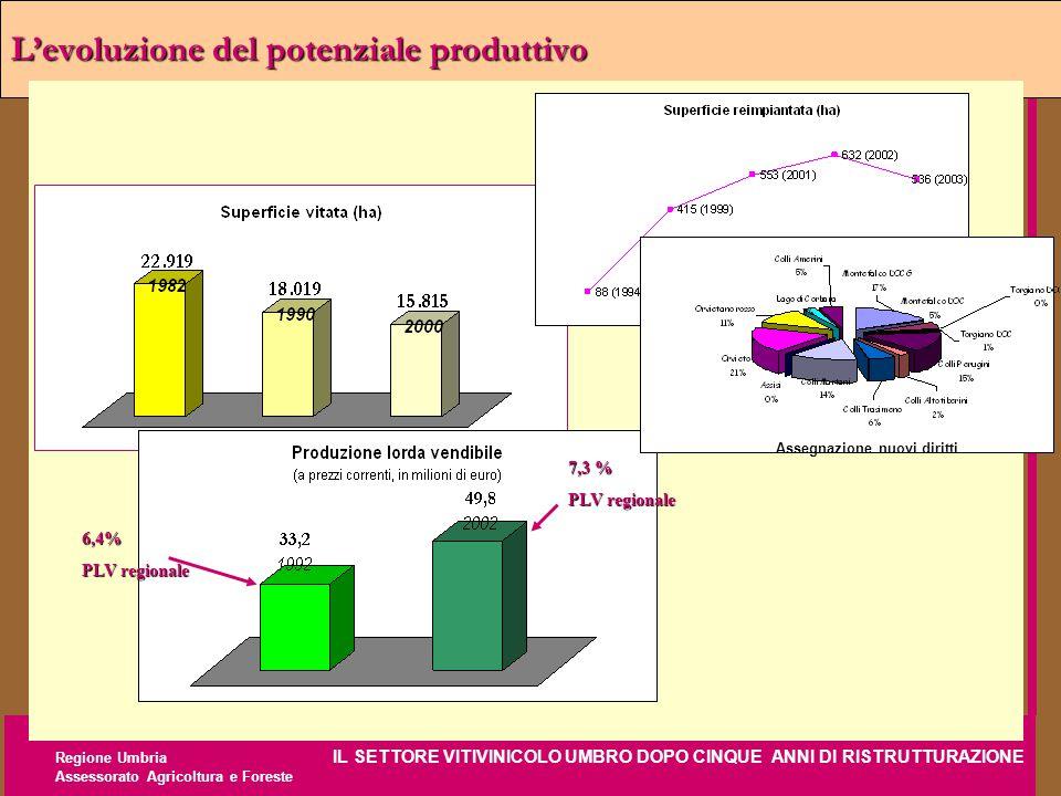 Regione Umbria IL SETTORE VITIVINICOLO UMBRO DOPO CINQUE ANNI DI RISTRUTTURAZIONE Assessorato Agricoltura e Foreste L'evoluzione del potenziale produt