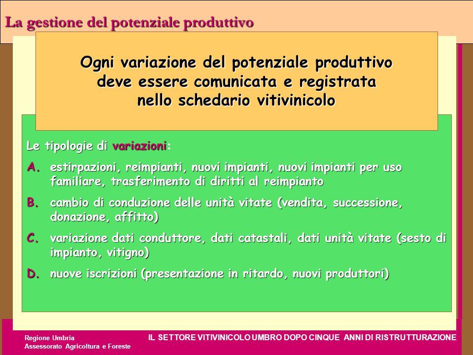 Regione Umbria IL SETTORE VITIVINICOLO UMBRO DOPO CINQUE ANNI DI RISTRUTTURAZIONE Assessorato Agricoltura e Foreste La gestione del potenziale produtt