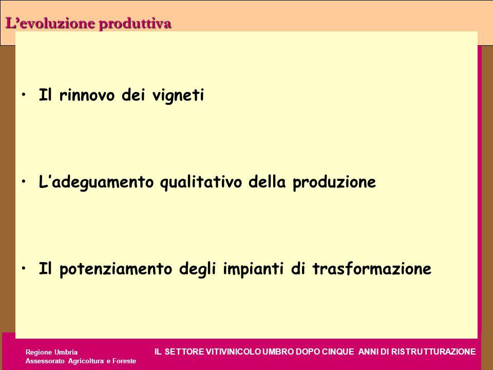 Regione Umbria IL SETTORE VITIVINICOLO UMBRO DOPO CINQUE ANNI DI RISTRUTTURAZIONE Assessorato Agricoltura e Foreste L'evoluzione produttiva Il rinnovo