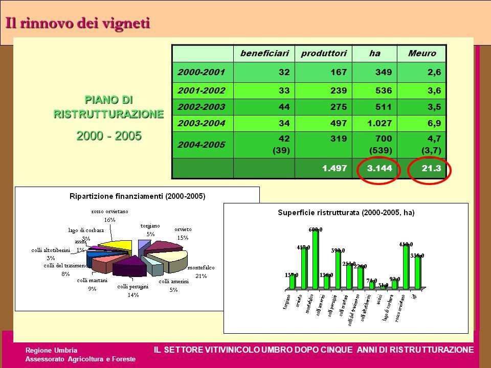 Regione Umbria IL SETTORE VITIVINICOLO UMBRO DOPO CINQUE ANNI DI RISTRUTTURAZIONE Assessorato Agricoltura e Foreste Il rinnovo dei vigneti beneficiari