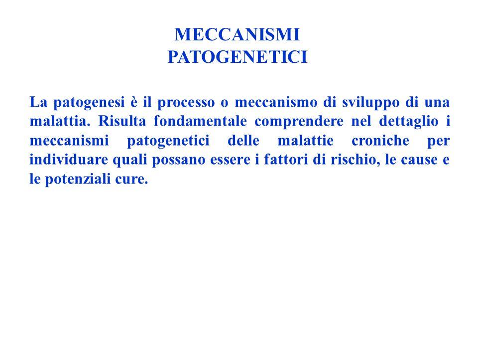 MECCANISMI PATOGENETICI La patogenesi è il processo o meccanismo di sviluppo di una malattia. Risulta fondamentale comprendere nel dettaglio i meccani