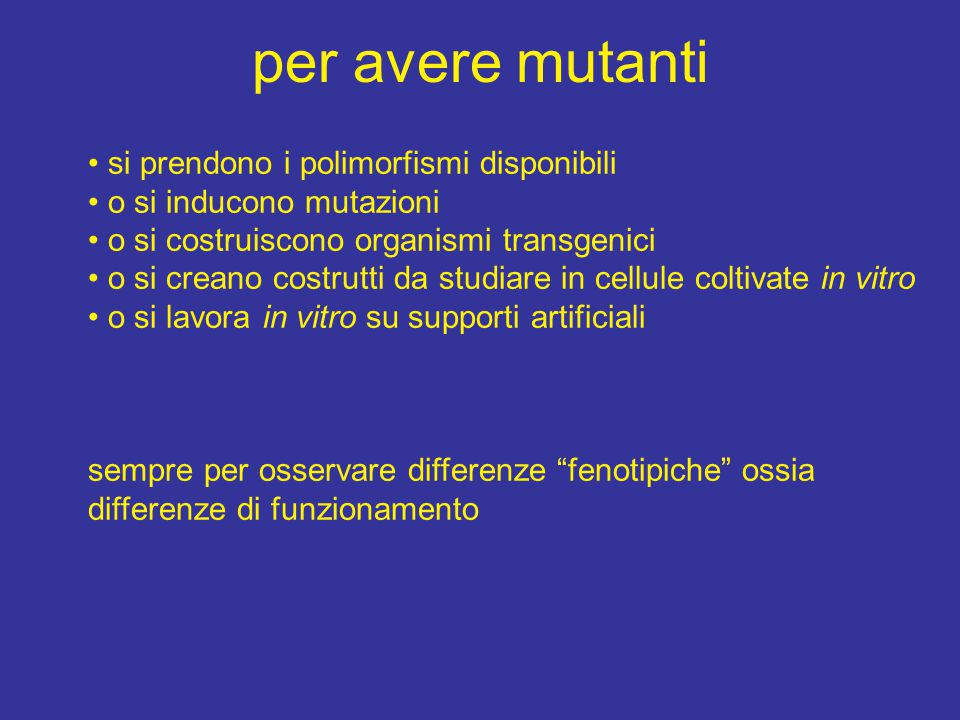 per avere mutanti si prendono i polimorfismi disponibili o si inducono mutazioni o si costruiscono organismi transgenici o si creano costrutti da studiare in cellule coltivate in vitro o si lavora in vitro su supporti artificiali sempre per osservare differenze fenotipiche ossia differenze di funzionamento