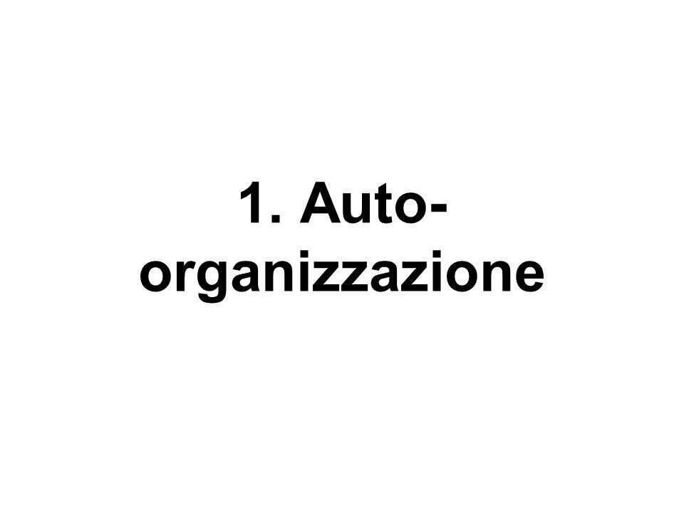 1. Auto- organizzazione