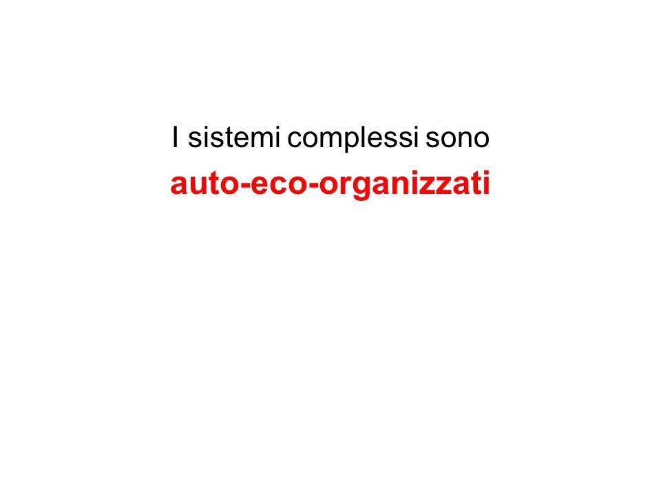 I sistemi complessi sono auto-eco-organizzati