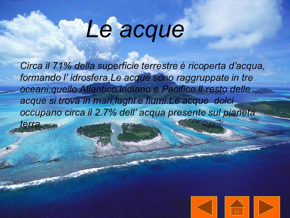 Le acque Circa il 71% della superficie terrestre è ricoperta d'acqua, formando l' idrosfera.Le acque sono raggruppate in tre oceani:quello Atlantico,I