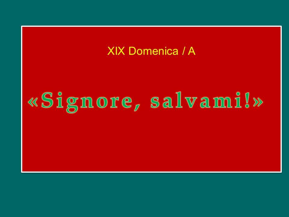XIX Domenica / A