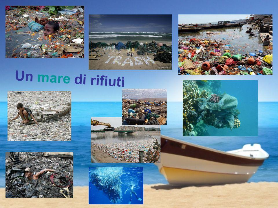 gli shopper e altri cibi Un mondo di rifiuti