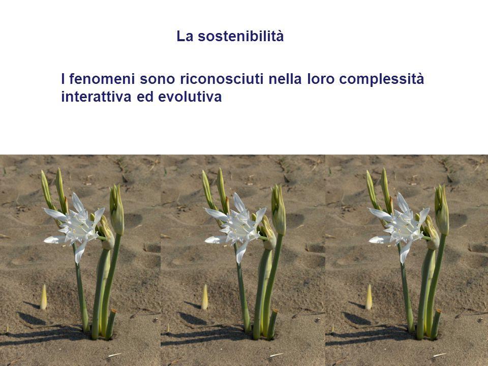 La sostenibilità I fenomeni sono riconosciuti nella loro complessità interattiva ed evolutiva