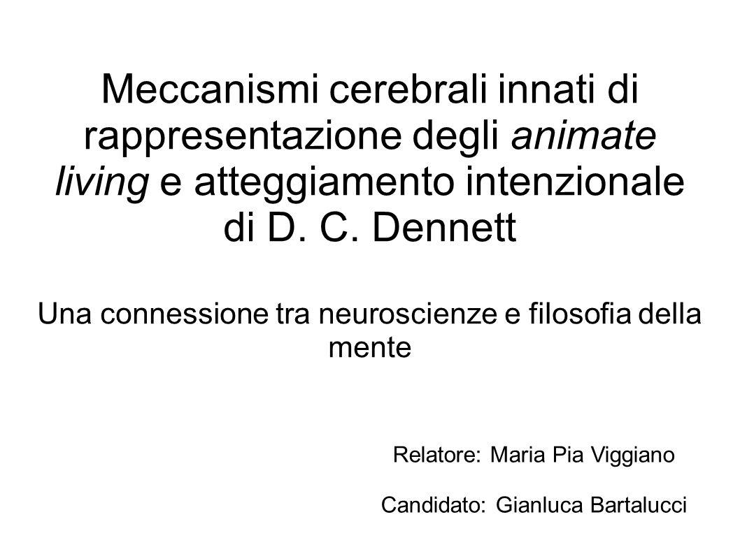 Meccanismi cerebrali innati di rappresentazione degli animate living e atteggiamento intenzionale di D.