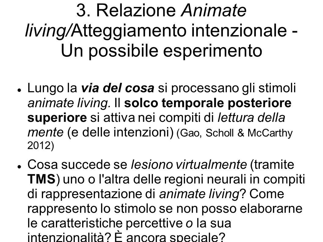 3. Relazione Animate living/Atteggiamento intenzionale - Un possibile esperimento Lungo la via del cosa si processano gli stimoli animate living. Il s