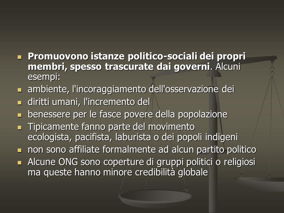 Promuovono istanze politico-sociali dei propri membri, spesso trascurate dai governi.