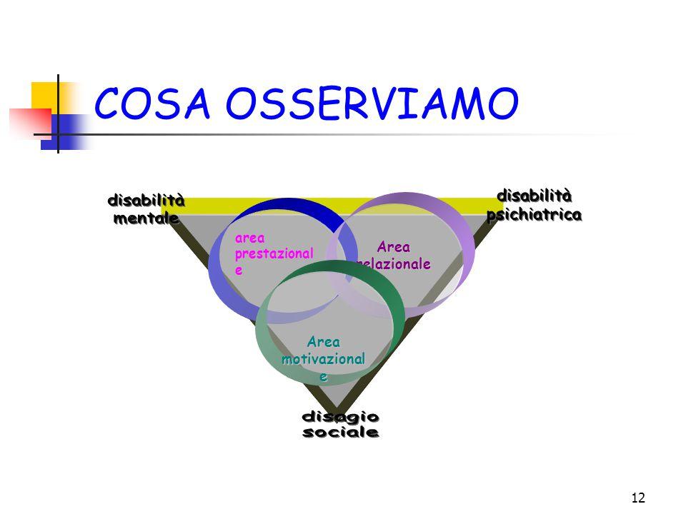 12 COSA OSSERVIAMO area prestazional e Arearelazionale Area motivazional e