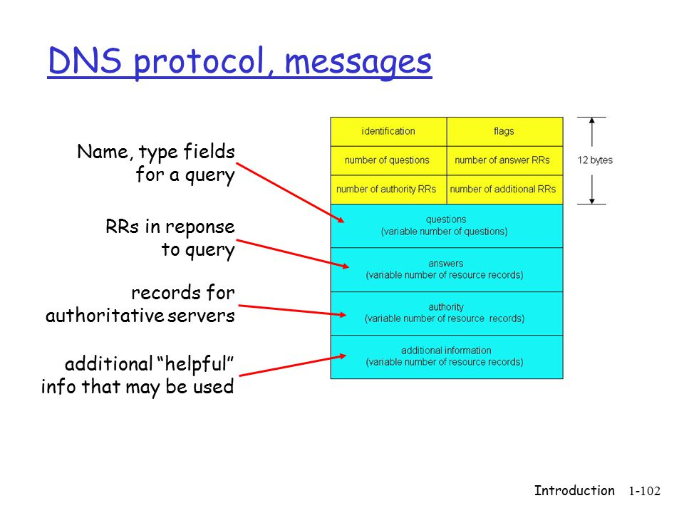 Introduction1-102 DNS protocol, messages Name, type fields for a query RRs in reponse to query records for authoritative servers additional helpful info that may be used