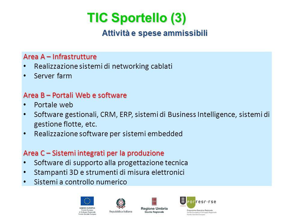 Area A – Infrastrutture Realizzazione sistemi di networking cablati Server farm Area B – Portali Web e software Portale web Software gestionali, CRM, ERP, sistemi di Business Intelligence, sistemi di gestione flotte, etc.
