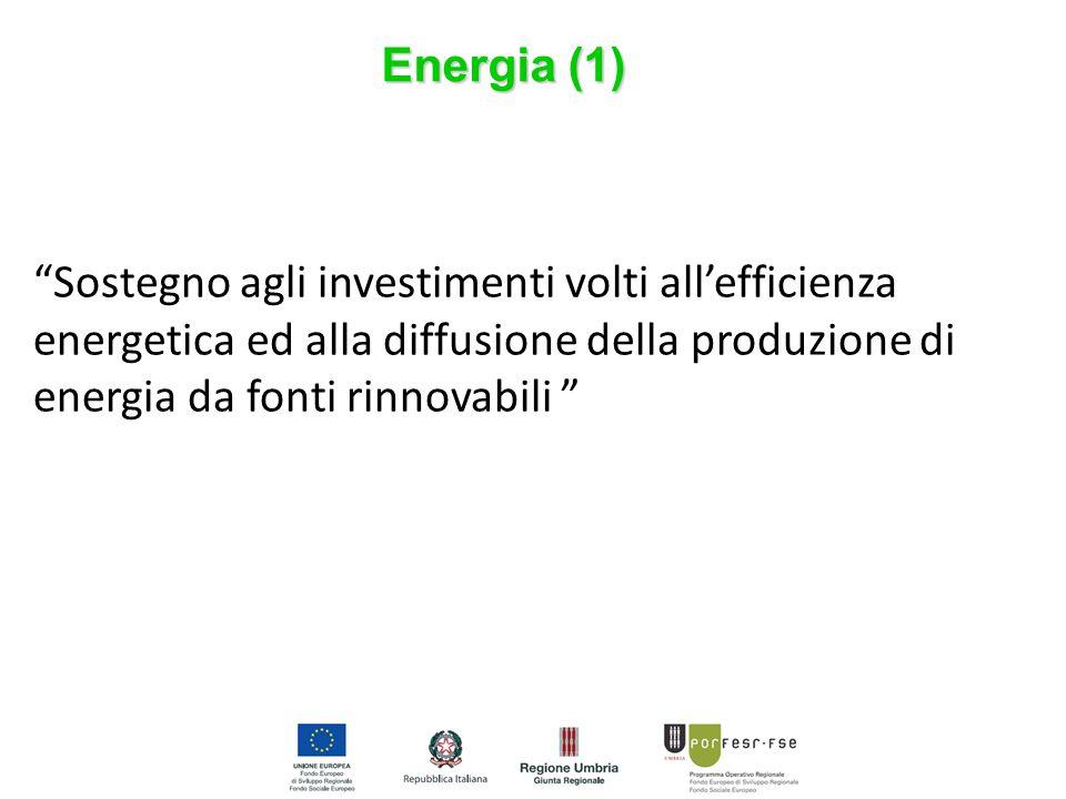 """Energia (1) """"Sostegno agli investimenti volti all'efficienza energetica ed alla diffusione della produzione di energia da fonti rinnovabili """""""