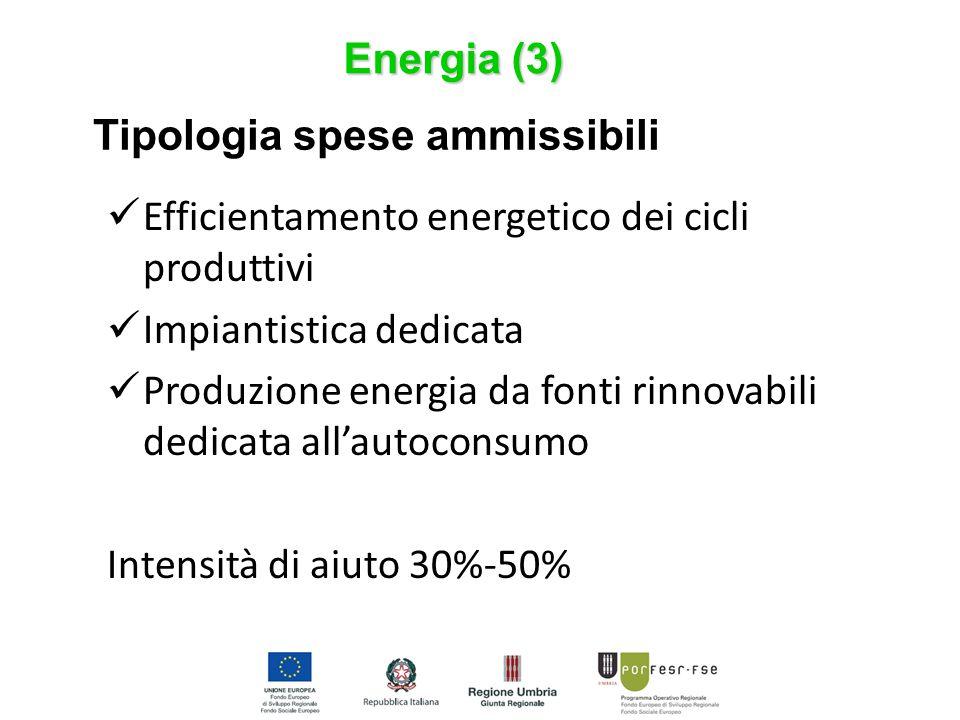 Energia (3) Tipologia spese ammissibili Efficientamento energetico dei cicli produttivi Impiantistica dedicata Produzione energia da fonti rinnovabili dedicata all'autoconsumo Intensità di aiuto 30%-50%