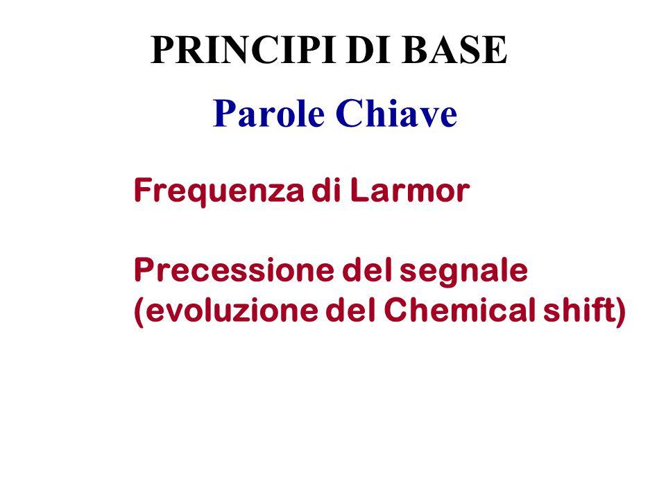 Parole Chiave Frequenza di Larmor Precessione del segnale (evoluzione del Chemical shift) PRINCIPI DI BASE