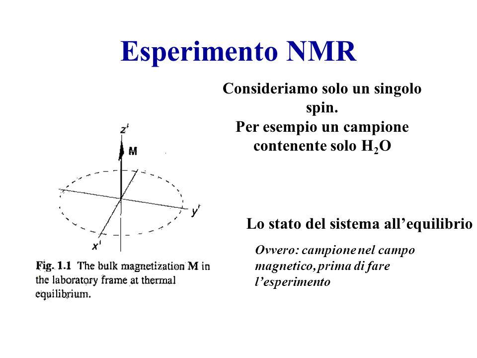 Esperimento NMR Lo stato del sistema all'equilibrio Ovvero: campione nel campo magnetico, prima di fare l'esperimento Consideriamo solo un singolo spi