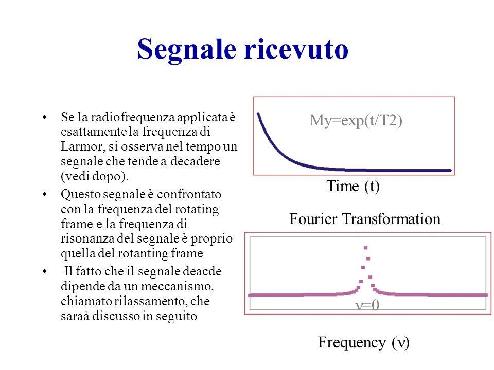 Segnale ricevuto Se la radiofrequenza applicata è esattamente la frequenza di Larmor, si osserva nel tempo un segnale che tende a decadere (vedi dopo)