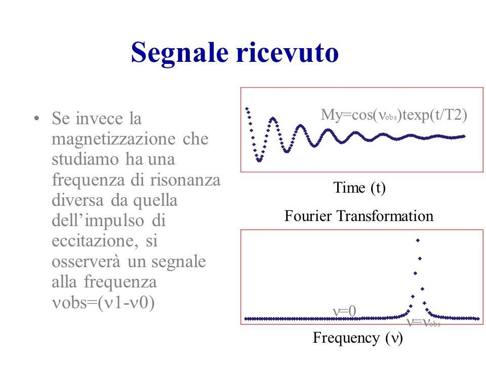 Segnale ricevuto Se invece la magnetizzazione che studiamo ha una frequenza di risonanza diversa da quella dell'impulso di eccitazione, si osserverà u