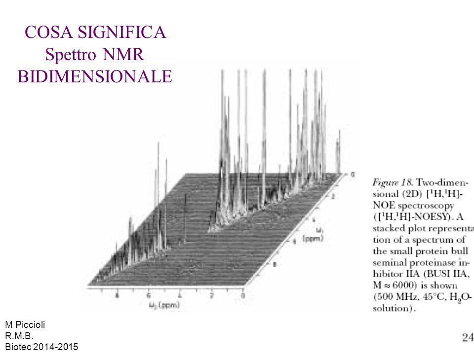 COSA SIGNIFICA Spettro NMR BIDIMENSIONALE M Piccioli R.M.B. Biotec 2014-2015