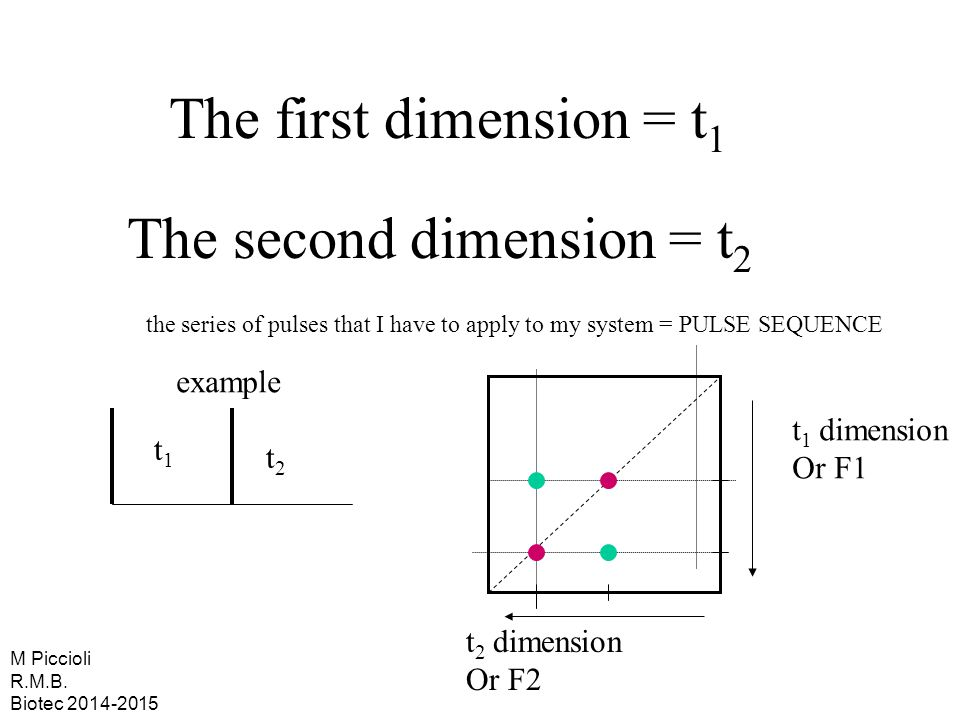 The first dimension = t 1 The second dimension = t 2 the series of pulses that I have to apply to my system = PULSE SEQUENCE example t1t1 t2t2 t 1 dim