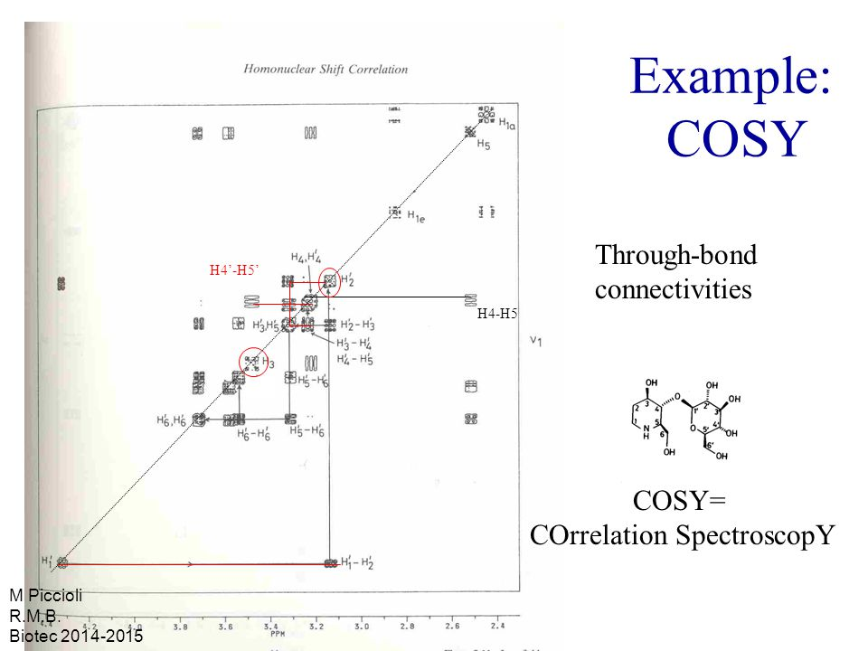 Example: COSY Through-bond connectivities COSY= COrrelation SpectroscopY H4-H5 H4'-H5' M Piccioli R.M.B.
