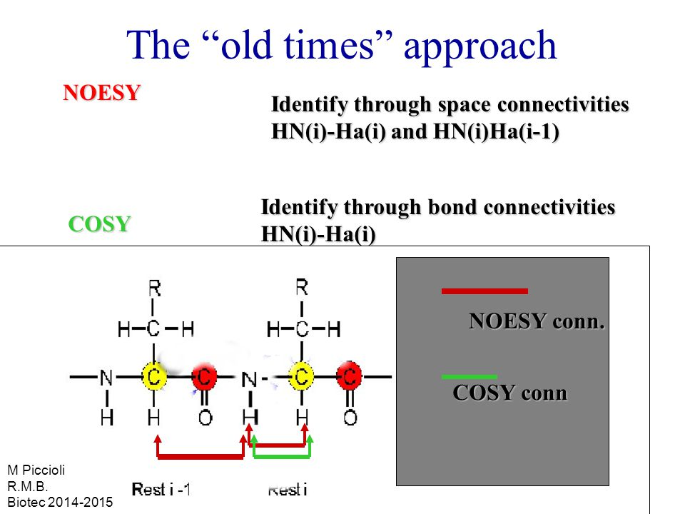 The old times approachNOESY COSY Identify through space connectivities HN(i)-Ha(i) and HN(i)Ha(i-1) Identify through bond connectivities HN(i)-Ha(i) NOESY conn.