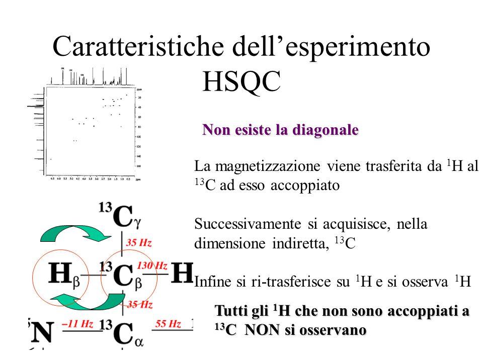 Caratteristiche dell'esperimento HSQC Non esiste la diagonale La magnetizzazione viene trasferita da 1 H al 13 C ad esso accoppiato Successivamente si