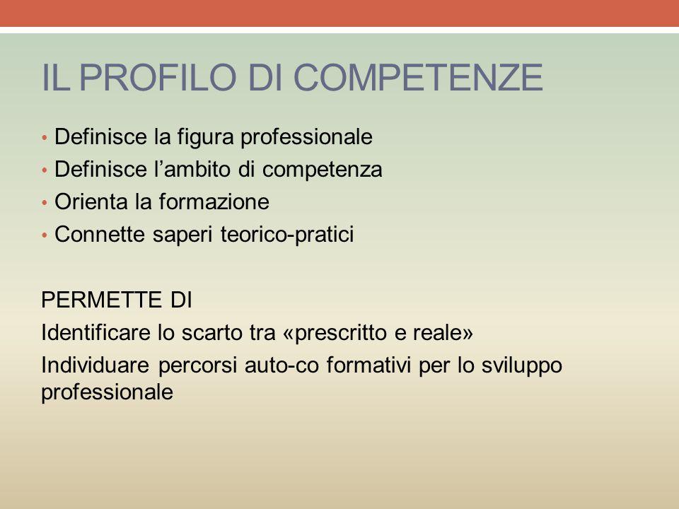 IL PROFILO DI COMPETENZE Definisce la figura professionale Definisce l'ambito di competenza Orienta la formazione Connette saperi teorico-pratici PERM
