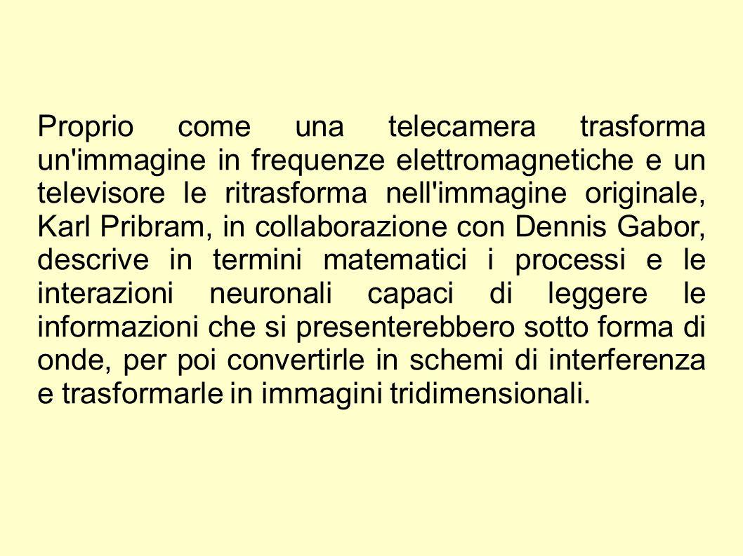 Proprio come una telecamera trasforma un'immagine in frequenze elettromagnetiche e un televisore le ritrasforma nell'immagine originale, Karl Pribram,