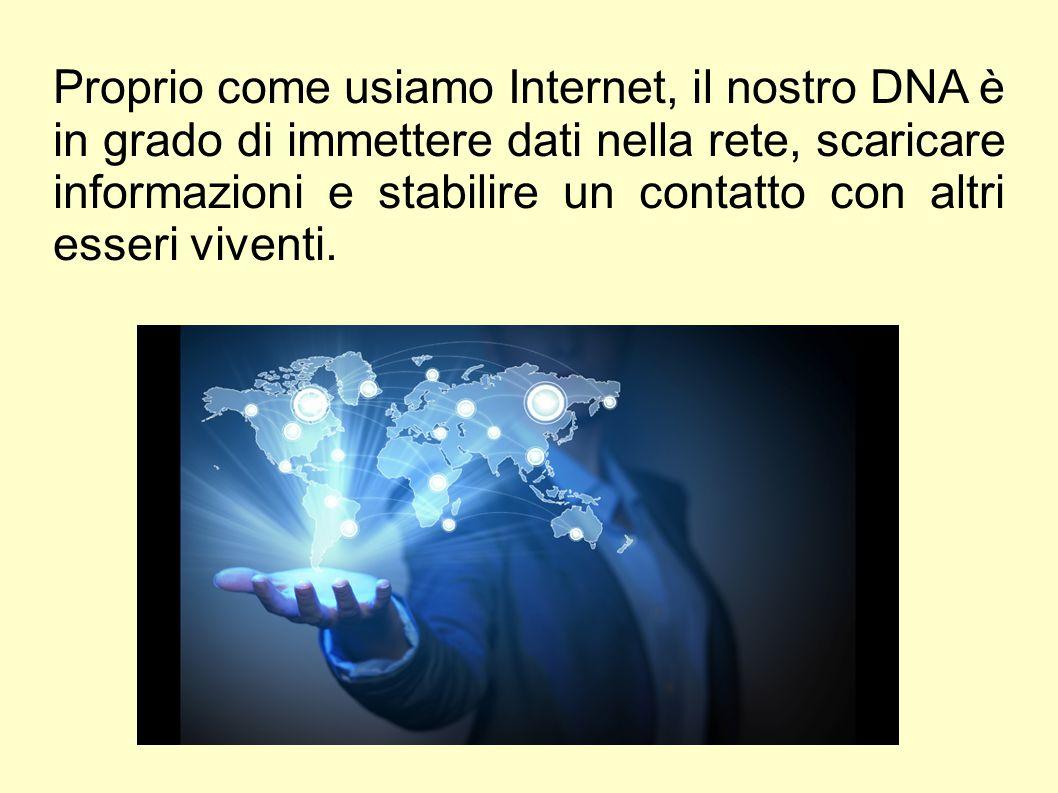 Proprio come usiamo Internet, il nostro DNA è in grado di immettere dati nella rete, scaricare informazioni e stabilire un contatto con altri esseri v