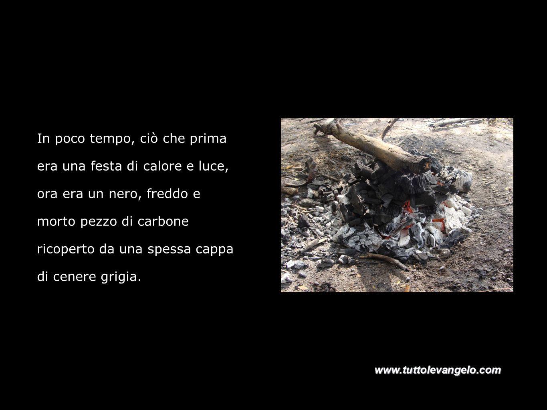 In poco tempo, ciò che prima era una festa di calore e luce, ora era un nero, freddo e morto pezzo di carbone ricoperto da una spessa cappa di cenere grigia.