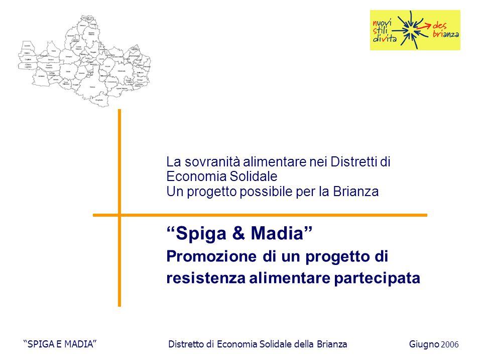I PARTE: il quadro di riferimento SPIGA E MADIA Distretto di Economia Solidale della BrianzaGiugno 2006