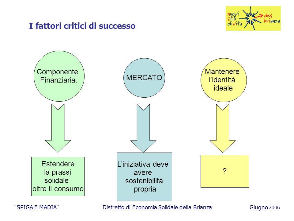 I fattori critici di successo Componente Finanziaria.