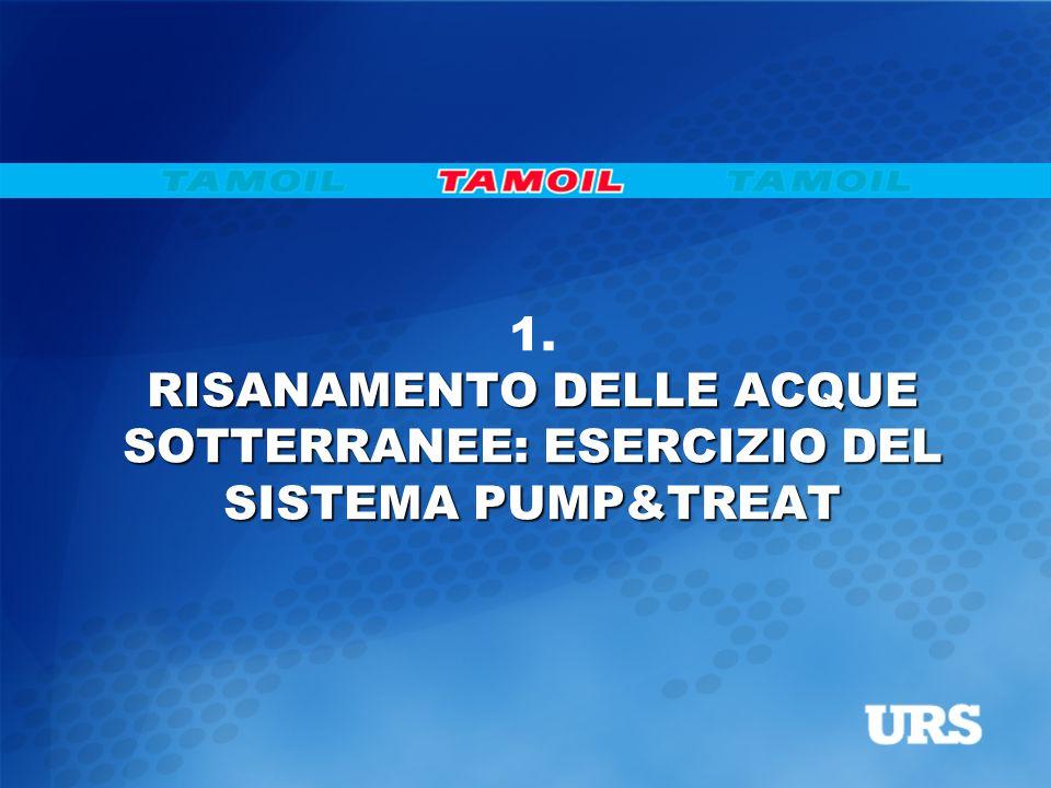 RISANAMENTO DELLE ACQUE SOTTERRANEE: ESERCIZIO DEL SISTEMA PUMP&TREAT 1.