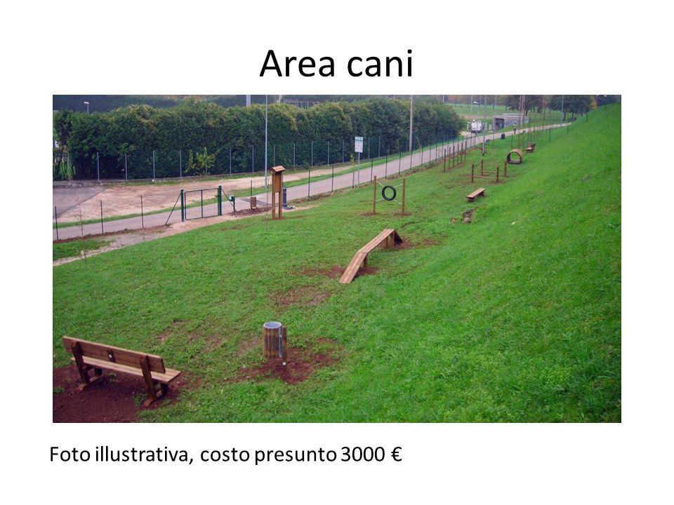 Foto illustrativa, costo presunto 3000 €