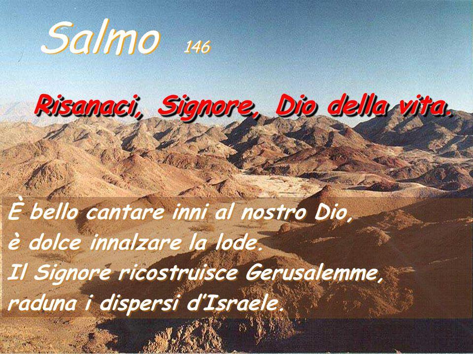 Il salmo 146 (nel gruppo dello Hallel finale 145-150) e insieme con il 147, loda Dio per quanto ha fatto a Gerusalemme (l'umanità) -Ha ricostruito Ger