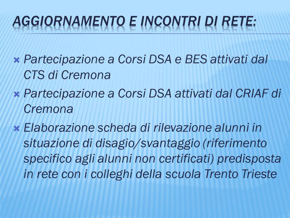  Partecipazione a Corsi DSA e BES attivati dal CTS di Cremona  Partecipazione a Corsi DSA attivati dal CRIAF di Cremona  Elaborazione scheda di ril
