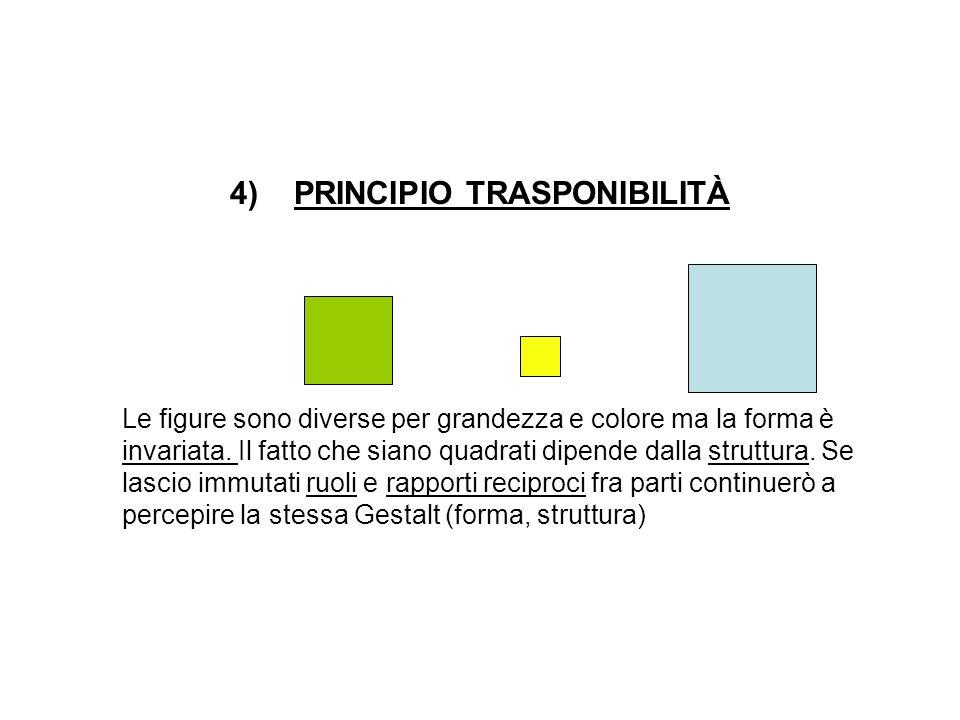 4)PRINCIPIO TRASPONIBILITÀ Le figure sono diverse per grandezza e colore ma la forma è invariata.